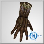 Aerus Studded Gloves(All Realms)