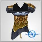 Mid Dragonslayer Half-Robe