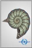 TOA O Shield SmallNautilus01