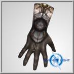 Aerus Plate Glove(All Realms)
