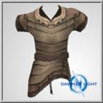 Celtic Leather 2 Vest